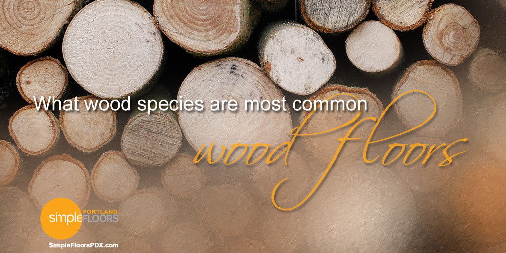 What Wood Species Are Most Common For Wood Floors?