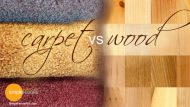 Carpeting vs Hardwood Floors
