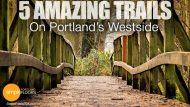 Portland's Westside: 5 Trails To Help You Reset